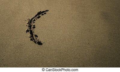 sable, symbole paix