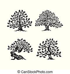 sacré, silhouette, arrière-plan., logo, arbre, chêne, isolé, blanc, énorme