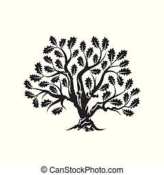 sacré, silhouette, isolé, logo, blanc, énorme, arbre chêne, écusson, arrière-plan.