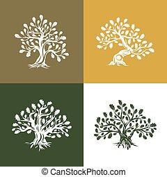 sacré, silhouette, logo, arbre, chêne, isolé, fond, énorme