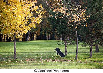 saison, automne, terrain de golf