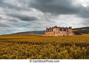 saison, france, automne, vignobles, bourgogne, chateau
