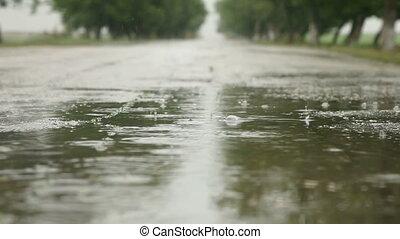 saison, pluvieux