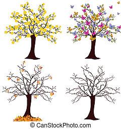 saisonnier, arbre