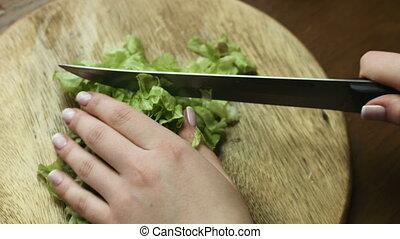 salad., woman`s, haut, partage, salade verte, vert, mains, légume, fin, savoureux, diététique