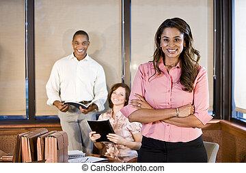 salle réunion, diversité, lieu travail, réunion