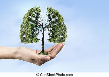 santé, concept, écologie