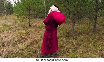 santa, sac, claus, forêt, cadeau