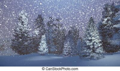 sapin, forêt, nuit, magique, neigeux