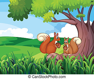 sauvage, arbre, animaux, deux, sous