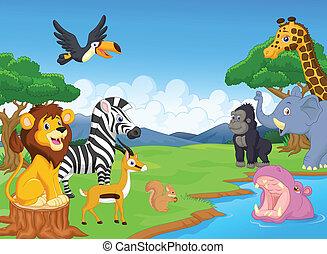 sauvage, dessin animé, animal