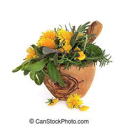 sauvage, herbes, fleurs