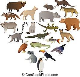 sauvage, image, vecteur, animaux