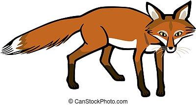 sauvage, renard