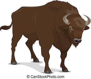 sauvage, sport, bison, mammifère, chasse