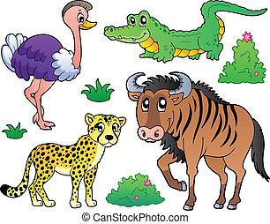 savane, 2, animaux, collection