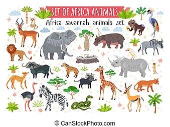 savane, afrique, set., animaux