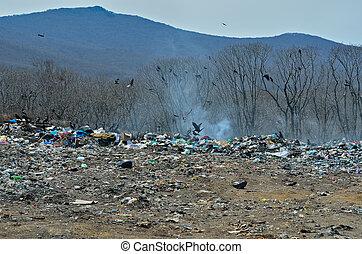 scrap-heap, 12