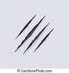 scratching., illustration, griffes, transparent, isolé, grattements, vecteur, fond