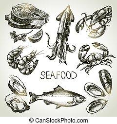 seafood., croquis, ensemble, illustration, main, vecteur, dessiné