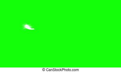 seamless, screen., voler, looping., feather., vert