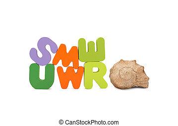 seashell., été, -, mot, concept., letters., coloré, closeup, bois