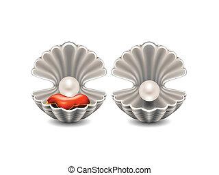 seashell, ouvert, perle