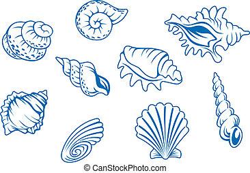 seashells, ensemble, océan