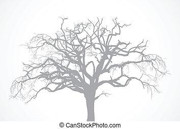 sec, arbre, vecteur, vieux, chêne, -, mort, sans, nu, corneille, silhouette, feuille