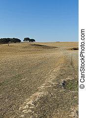 sec, portugal., paysage