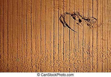sec, texture bois