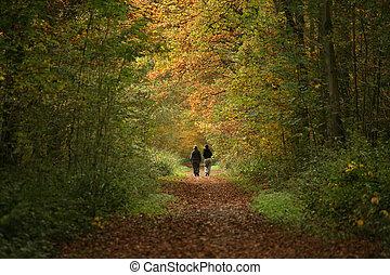 sentier, forêt, marcheurs