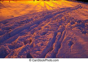 sentier, hiver