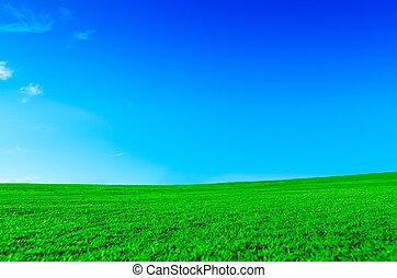 serein, paysage vert