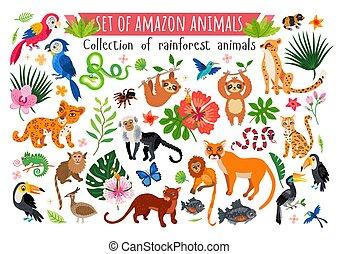 set., collection, sauvage, tropique, savane, afrique, animaux