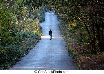 seul, marche, forêt, route, homme