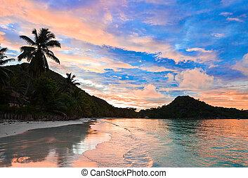 seychelles, plage, exotique, cote, or, coucher soleil