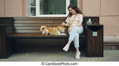 shiba, chiot, séance, inu, caresser, chien, banc, rue, femme, propriétaire, café