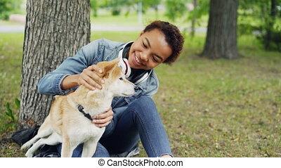 shiba, regarder, adoration, lent, fourrure, reposer, inu, summer., parc chien, il, caresser, embêter, mouvement, séduisant, propriétaire, girl, chiot, adorable, sien, aimer