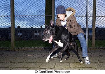 sien, loin, vicieux, chien, saut, propriétaire