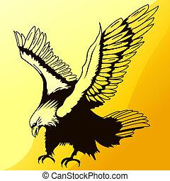 silhouette aigle, atterrissage