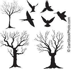 silhouette, arbre 3, oiseaux, vecteur