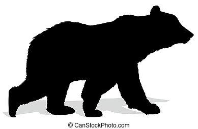 silhouette, bear.