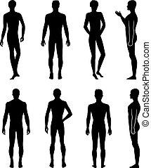 silhouette, dos, longueur, devant, entiers