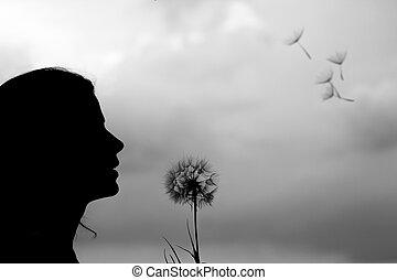 silhouette, girl, pissenlit