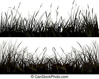 silhouette, grass., pré