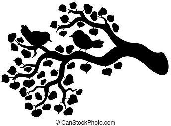 silhouette, oiseaux, branche