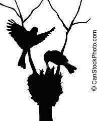 silhouette, oiseaux, famille