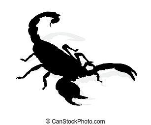 silhouette, scorpion.