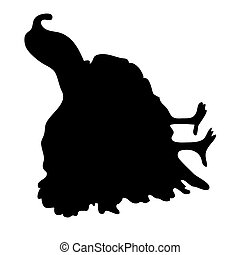 silhouette, turkey., noir